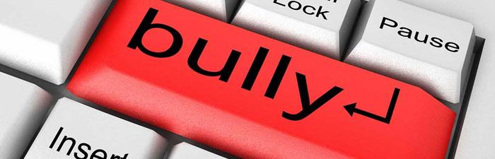 Cyber bulliying