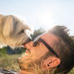 """¿Cuándo tu perro te dice """"te quiero""""?"""